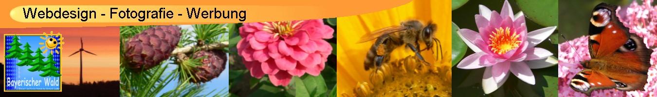 webdesign-fotografie-internetmarketing-musterbriefe-bilder