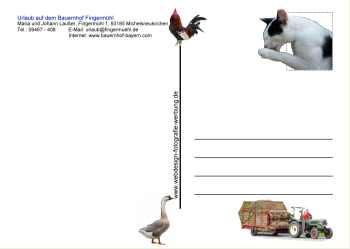 Informationen über Postkarten - Wissenswertes Hinweise, Infos, Tips