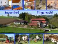 Postkarte Bauernhof - Entwürfe Beispiele Vorlagen